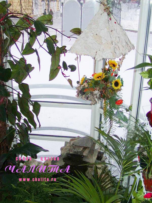 Трафареты цветов своими руками маки